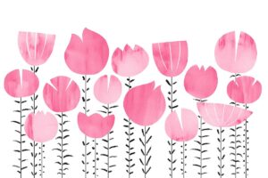 Bloom_rosa