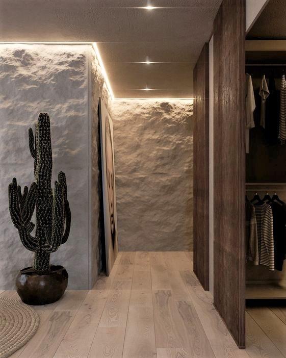 corridoio moderno con pianta di cactus