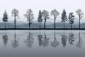 mirrored_blu