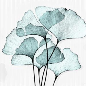 x-ray colore azzurro carta da parati